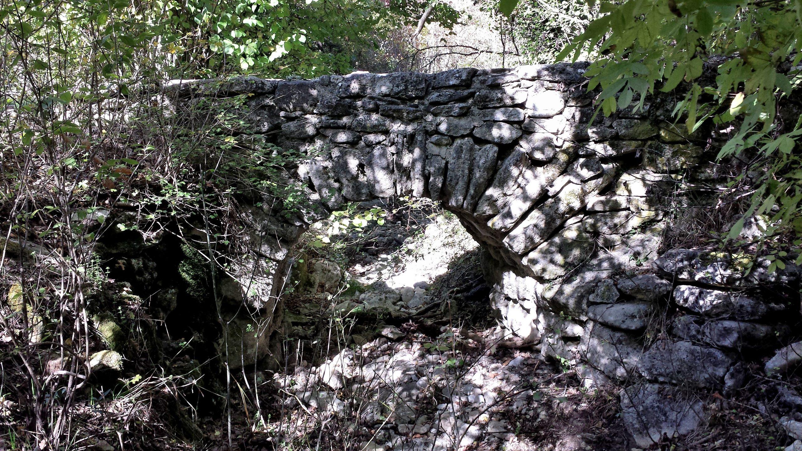 Atelier in situ - Découverte de la forêt de Sivergues