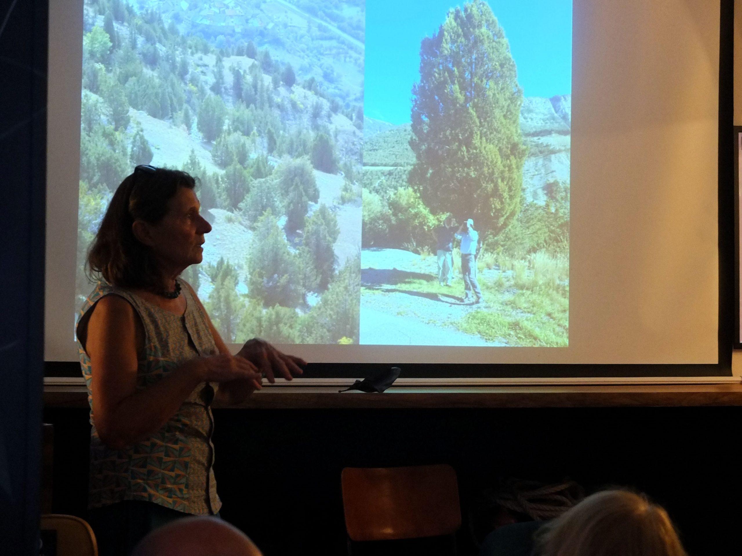 Conférences Femmes et paysage - Laurence Chaber