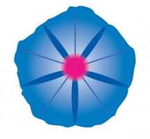 logo volubilis